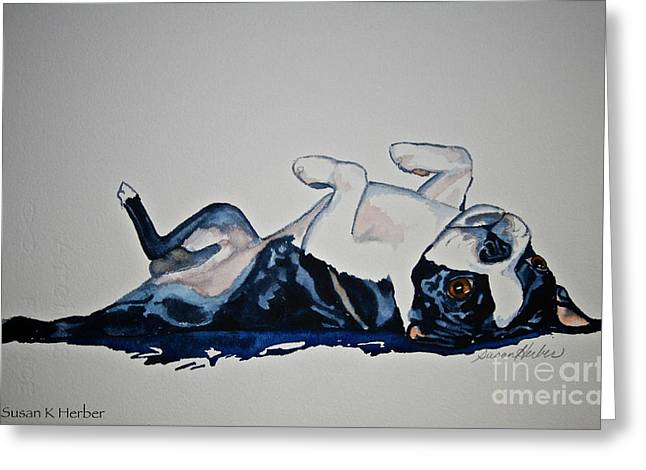 Boston Terrier Watercolor Greeting Cards - Birthday Suit Greeting Card by Susan Herber