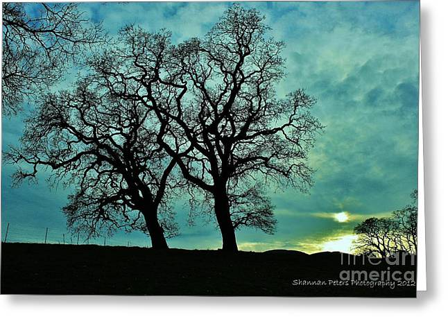 Bishop Hill Greeting Cards - Bishop Ranch Greeting Card by Shannan Peters