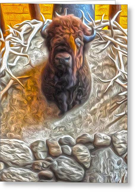 Bison Head Greeting Card by Gregory Dyer