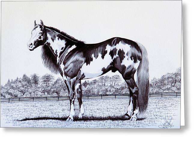 Quarter Horses Drawings Greeting Cards - Black and White Overo Paint Horse Greeting Card by Cheryl Poland