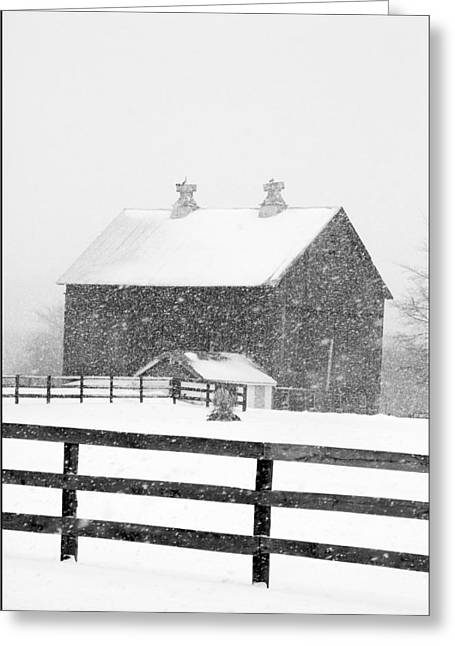Outbuildings Greeting Cards - Black and White Photograph of a barn near cannonsburg during a snowstorm Greeting Card by Randall Nyhof