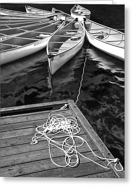 Lost Lake Greeting Cards - Black and White Photograph of a group of canoes tethered together and tied to a dock Greeting Card by Randall Nyhof