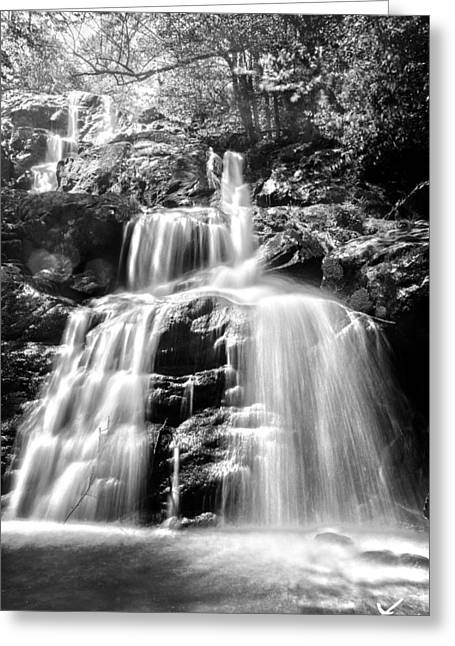 Sunshine Pyrography Greeting Cards - Black and White Shenandoah Falls Greeting Card by Shane York