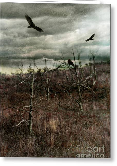 Circling Greeting Cards - Black Birds in Spiky Trees Greeting Card by Jill Battaglia