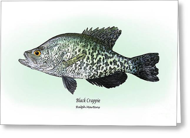 Sportfishing Greeting Cards - Black Crappie Greeting Card by Ralph Martens