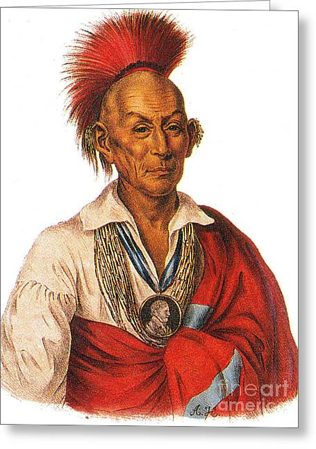 Native American Heroes Greeting Cards - Black Hawk, Leader Of The Sauk American Greeting Card by Photo Researchers