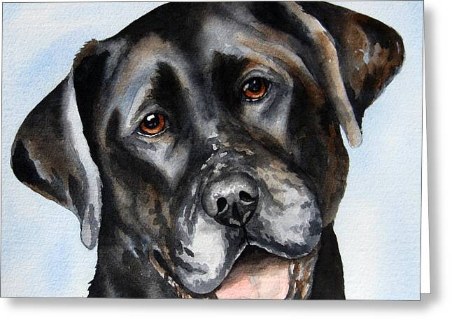 Portraits Of Pets Greeting Cards - Black Lab Smile Greeting Card by Cherilynn Wood