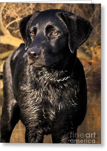 Pup Digital Art Greeting Cards - Black Labrador Retriever Dog Greeting Card by Cathy  Beharriell