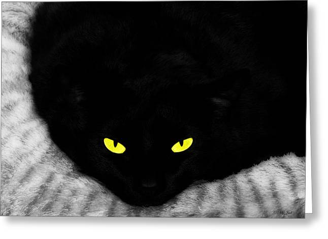 House Pet Mixed Media Greeting Cards - Black Panther Greeting Card by Ms Judi