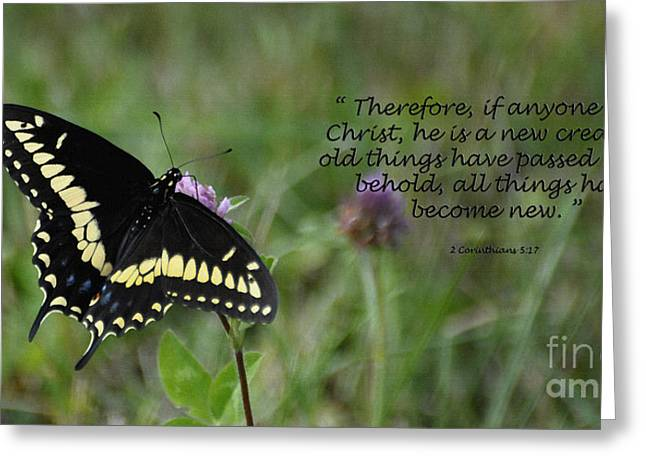Black Berries Greeting Cards - Black Swallow Tail Butterfly Greeting Card by Diane E Berry