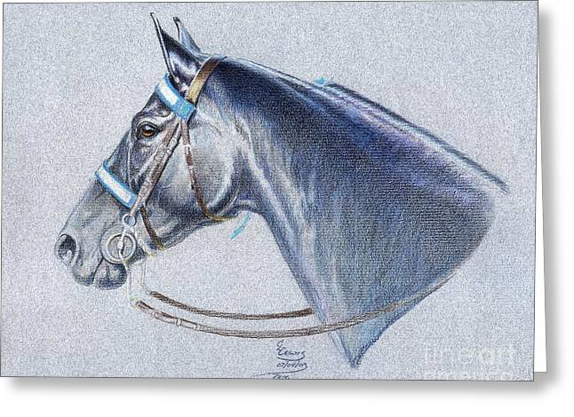 Black Tennessee Walker Greeting Card by Carrie L Lewis