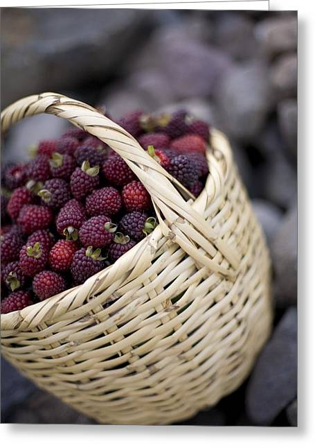Wellbeing Greeting Cards - Blackberries In A Basket Greeting Card by David DuChemin