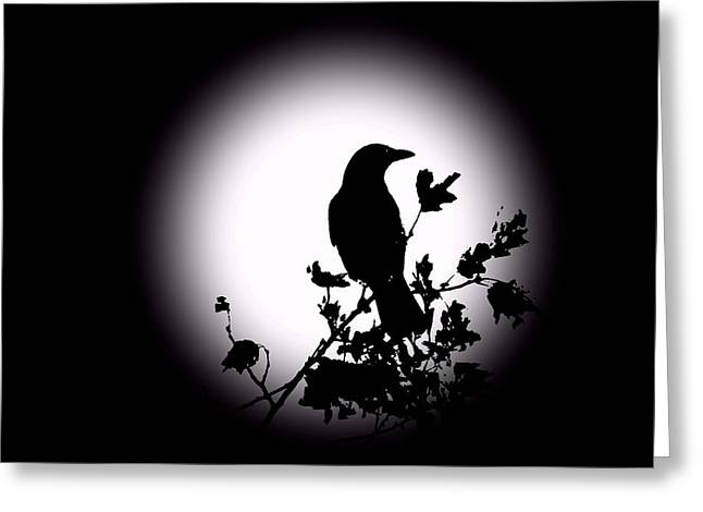 Birds Moon Greeting Cards - Blackbird in Silhouette  Greeting Card by David Dehner