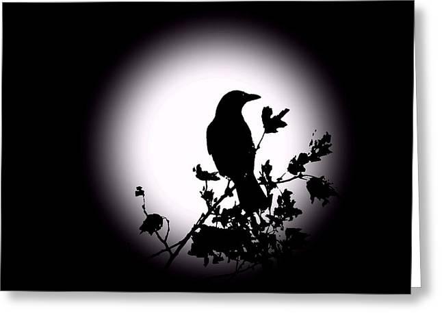 Blackbird in Silhouette  Greeting Card by David Dehner