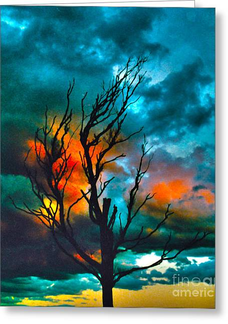 Joanne Kocwin Photographs Greeting Cards - Blackened Greeting Card by Joanne Kocwin