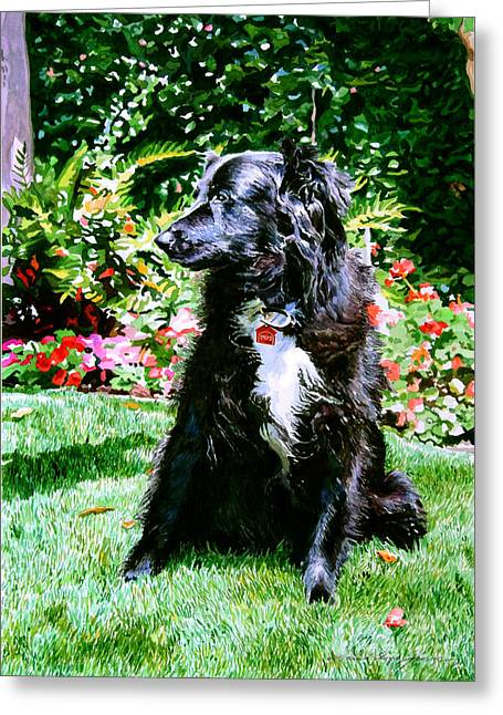 Pet Greeting Cards - Blackie Greeting Card by David Lloyd Glover