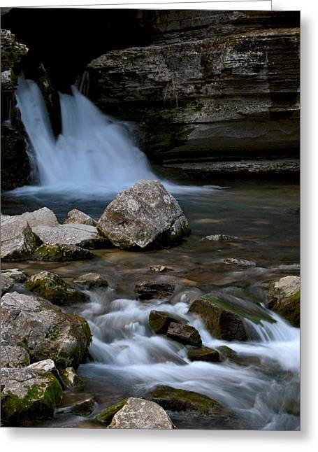 Jeka World Photography Greeting Cards - Blanchard Springs Greeting Card by Jeff Rose