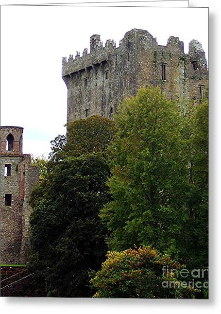 Blarney Castle Of Ireland Greeting Card by RL Rucker