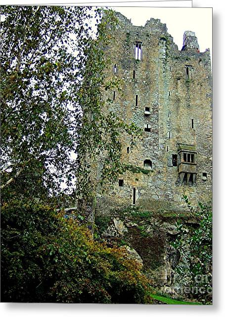 Blarney Foundation Greeting Card by RL Rucker