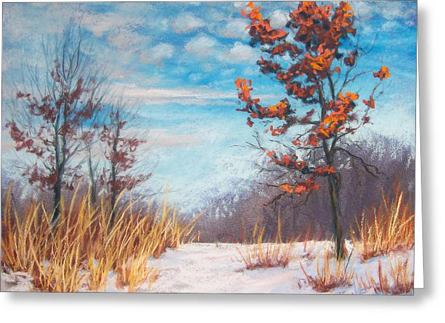 Snowed Trees Pastels Greeting Cards - Blazing Winter Grasses Greeting Card by Christine Camp