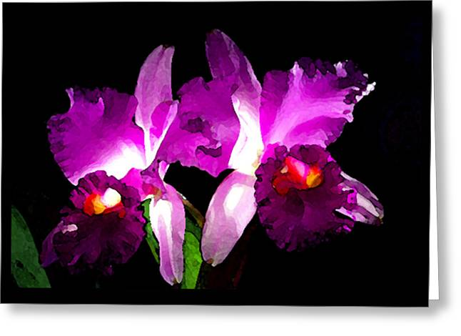 Cattleya Greeting Cards - Blc. Meditation King Ransom x C. Red Princess Greeting Card by Terry Bottom