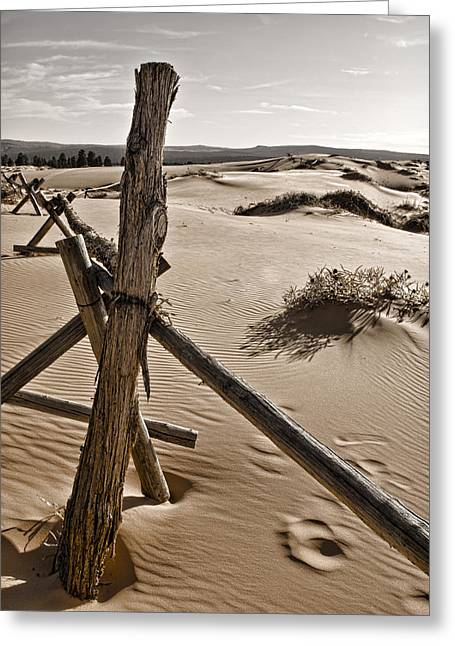 Sand Fences Photographs Greeting Cards - Bleak Greeting Card by Heather Applegate