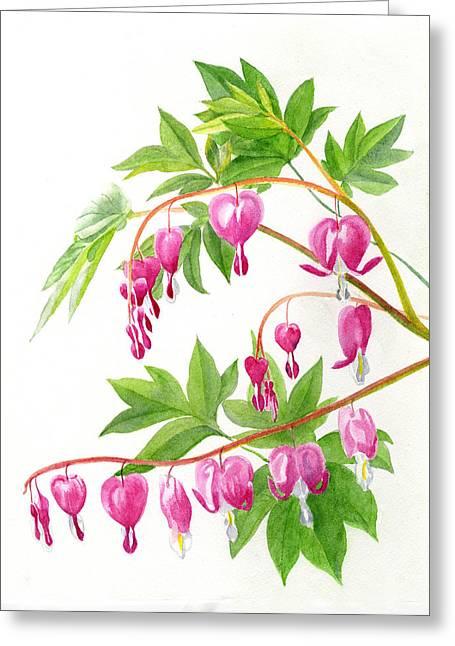 Watercolor! Art Greeting Cards - Bleeding Hearts #1 Greeting Card by Sharon Freeman