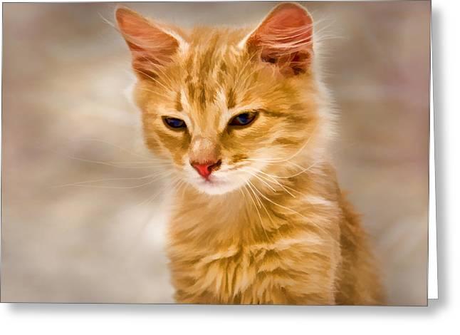 Baby Kitten Art Greeting Cards - Blondie Greeting Card by Steven Richardson