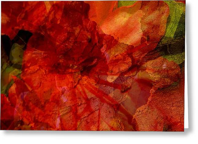 Blood Rose Greeting Card by Tom Romeo