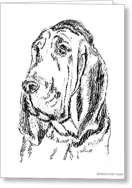 Blood Hound Greeting Cards - Bloodhound-Art-Portrait Greeting Card by Gordon Punt