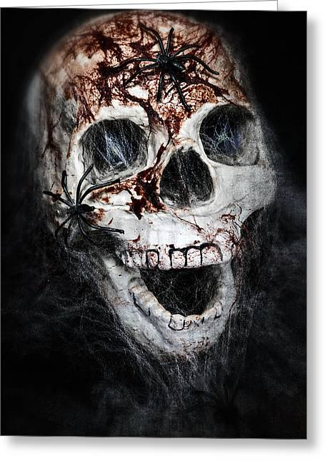 Spider Greeting Cards - Bloody Skull Greeting Card by Joana Kruse