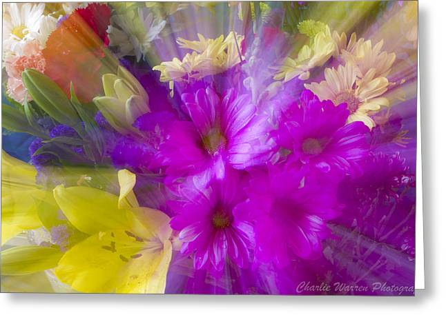 Bloom Zoom Greeting Card by Charles Warren