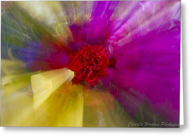 Bloom Zoom2 Greeting Card by Charles Warren