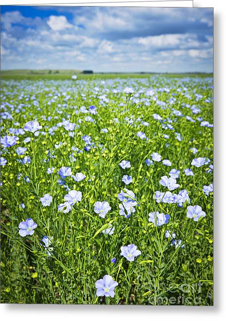 Many Greeting Cards - Blooming flax field Greeting Card by Elena Elisseeva