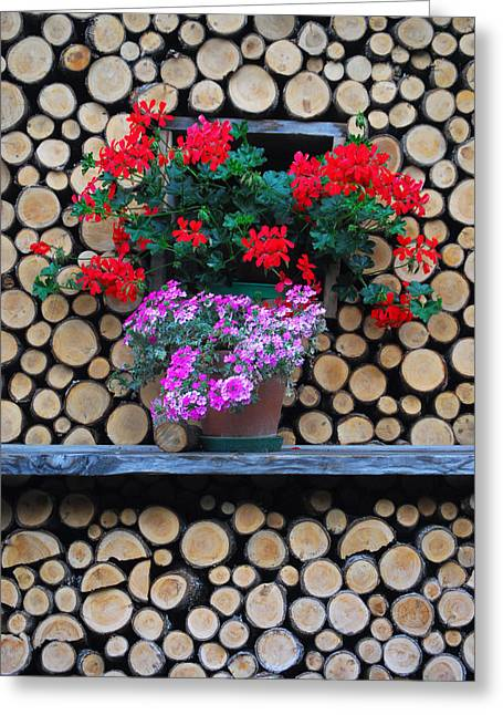 Murren Greeting Cards - Blooming Flower Baskets Nestled Greeting Card by Anne Keiser