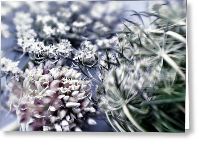 Green Chives Greeting Cards - Blossoms Greeting Card by HD Connelly