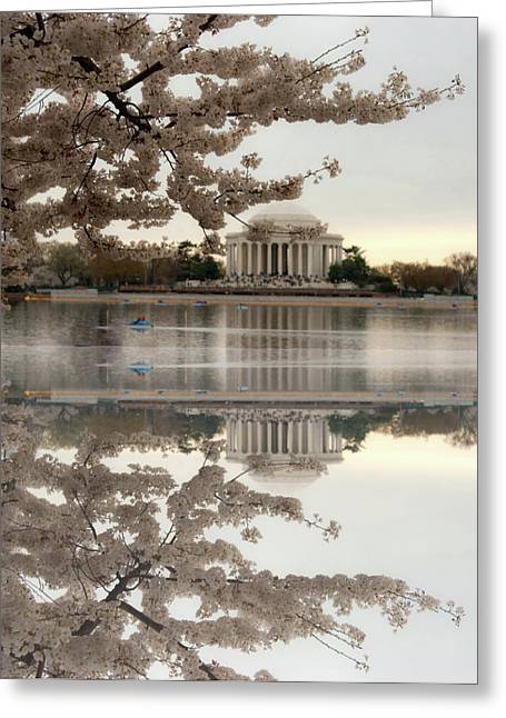 Jefferson Greeting Cards - Blossoms Reflection Greeting Card by Frank Garciarubio