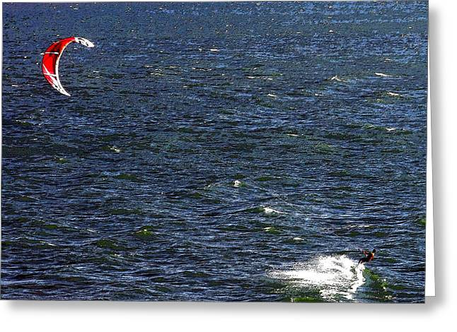 Wind Surfing Art Greeting Cards - Blowing in the Wind Greeting Card by David Lee Thompson