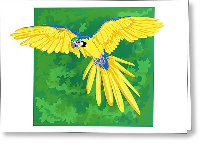 Blue And Green Greeting Cards - Blue And Gold Macaw Greeting Card by HD Connelly
