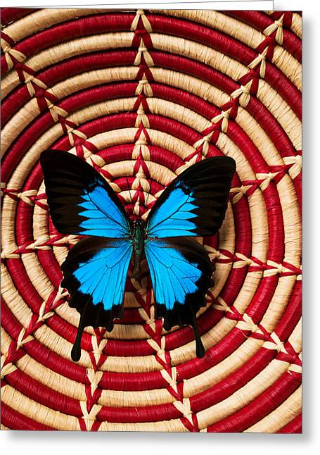 Metamorphosis Greeting Cards - Blue black butterfly in basket Greeting Card by Garry Gay