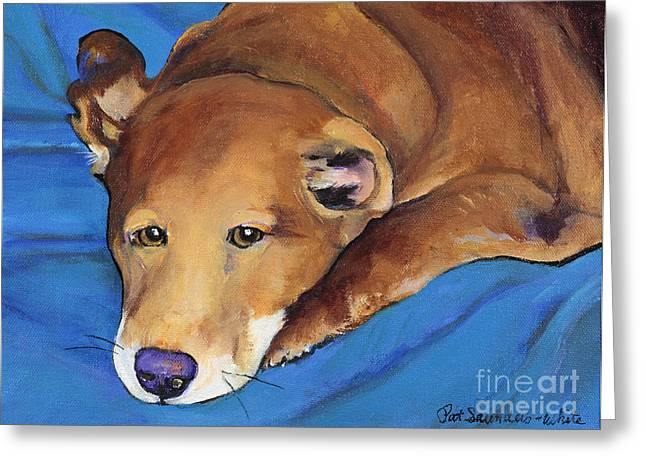 Pat Saunders-white Greeting Cards - Blue Blanket Greeting Card by Pat Saunders-White