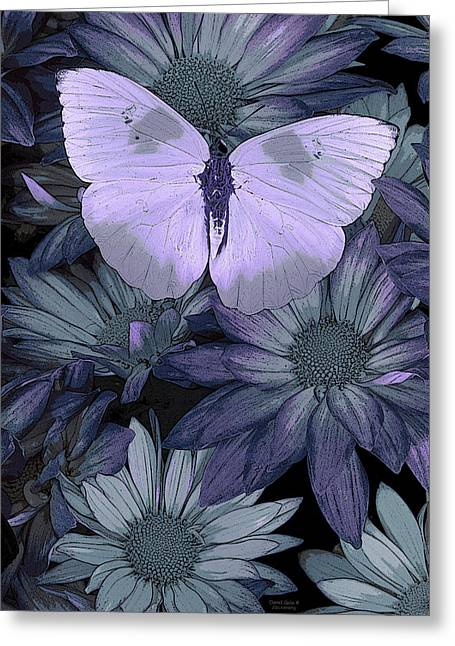 Overs Greeting Cards - Blue Butterfly Greeting Card by JQ Licensing