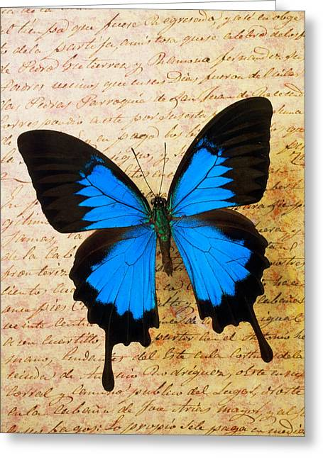 Blue Butterfly Greeting Cards - Blue butterfly on old letter Greeting Card by Garry Gay