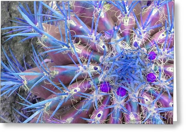Blue Cactus Greeting Card by Rebecca Margraf