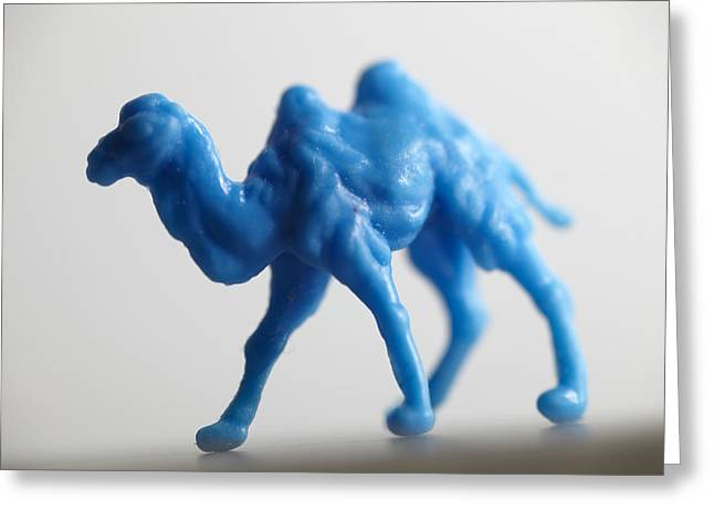 Verb Greeting Cards - Blue Camel Greeting Card by Greg Kopriva