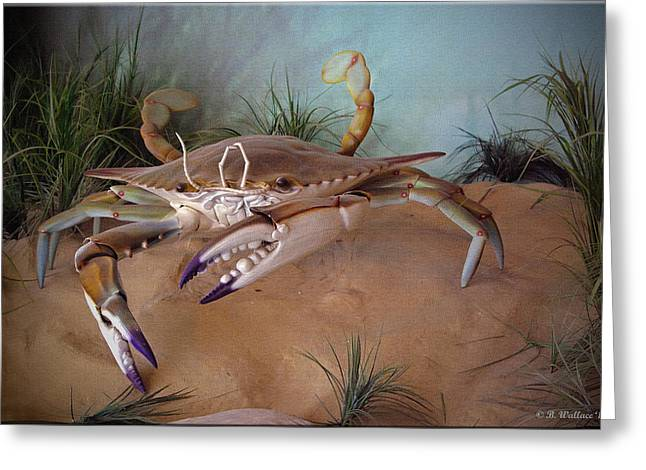Enhanced Greeting Cards - Blue Crab Greeting Card by Brian Wallace