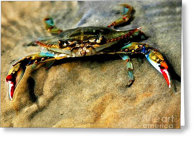 Blue Crabs Greeting Cards - Blue Crab Greeting Card by Joan McCool