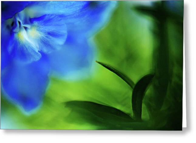 Cobalt Blues Greeting Cards - Blue Delphinium Greeting Card by Bonnie Bruno