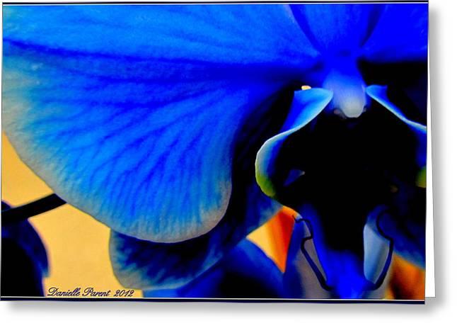 Blue Diamonds Orchids Greeting Card by Danielle  Parent