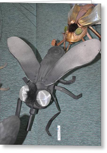 Science Sculptures Greeting Cards - Blue Eyed Black Fly Greeting Card by Michael Jude Russo